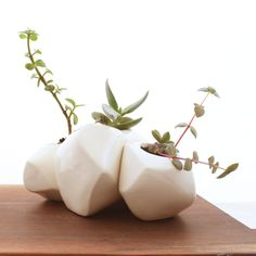 "Boulder Succulent Planters. Try to make my own boulder imitation planters for my 'terrarium' shelf with tightly wadded up newspaper over 1/2"" flat wooden cutout shapes covered with paper mache, paint with some texture mediums in places, and the right types of sealants. Then be fancy with some geode looking ones that have the oval broken open from side to top to show glittery crystal chips inside with a trailing plant hanging over the shelf. And make some resemble colored banded agates!"