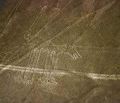 The Nasca lines figure known as the dog.