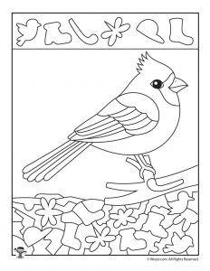 Cardinal Bird Find the Item Worksheet