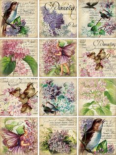 INSTANT DOWNLOAD diGiTal CollaGe Sheet ViNtaGe EpheMera ViCtorIaN FloRal WaLLpaPer BaCkgRounNDs vICToRiAn biRdS pRintableS, No. 81 via Etsy