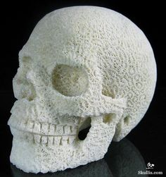 White Coral Crystal Skull
