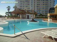 MIL ANUNCIOS.COM - Apart 1 hab Playa Paraiso Club Paraiso  Avenida Adeje 300, 10  en Playa Paraiso