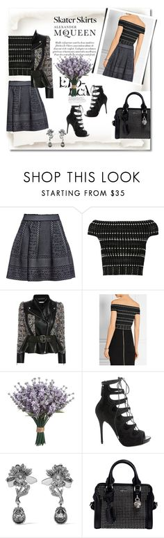 """""""Skater skirt from Alexander Mcqueen"""" by citychiclifestyle on Polyvore featuring Alexander McQueen, AlexanderMcQueen and skaterSkirts"""