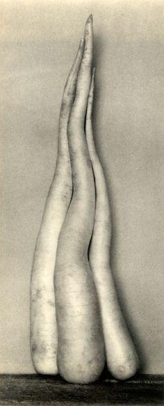 Edward Weston, Radishes