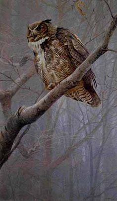 by Robert Bateman