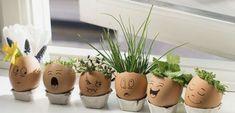 Neodhadzujte škrupinky z vajec. Vytvorte si s deťmi spoločne veľkonočné dekorácie - akcnemamy Planter Pots, Plant Pots