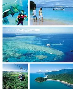 Cairns Australia- Great Barrier Reef