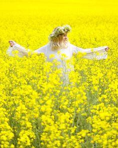 minun keltainen elämä