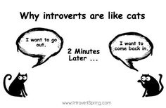 Why Introverts Are Like Cats - Michaela from Introvert Spring produced a meme a while back which likened introverts to cats. It struck me with its poignant accuracy. Here's why...