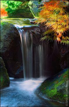 Garden of Zen - Portland Japanese Gardens, Portland, Oregon