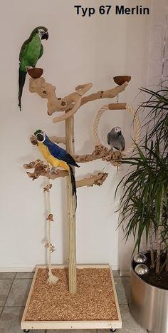 Parrot Perch Diy, Diy Parrot Toys, Diy Bird Toys, Bird Perch, Animal Room, Homemade Bird Toys, Parrot Play Stand, Parakeet Toys, Diy Bird Cage