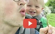 La scoperta dei soffioni è tutta da ridere: ecco il video della risata contagiosa di Buzz #primavera #natura