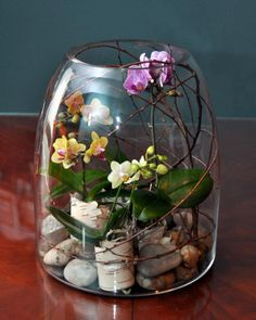 Make a Great First Impression With These Perfect Gifts for Meeting the Family Glasgefäß-Terrarium mit Orchidee Terrarium Diy, Orchid Terrarium, Orchids Garden, Orchid Plants, Indoor Garden, Indoor Plants, Deco Floral, Terraria, Glass Jars