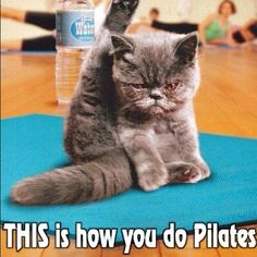 This is how you do Pilates!