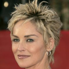 Short And Spiky Hairstyle Sharon Stone Hg De - Free Download Short And Spiky Hairstyle Sharon Stone Hg De #6118 With Resolution 325x325 Pixel | KookHair.com