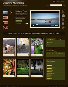 Check out our article featuring best free WordPress portfolio themes to flaunt your portfolio in style. These best free WordPress Themes have all features that you want. Wordpress Video Theme, Best Free Wordpress Themes, Wordpress Plugins, Website Company, Company Profile, Video Photography, Cool Websites, Multimedia, Blogging