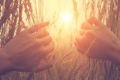 Comment l'aromathérapie peut elle aider à diminuer les douleurs chroniques et redonner du tonus et de la vitalité à l'organisme épuisé?