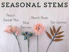 Seasonal-Stems-1.jpg