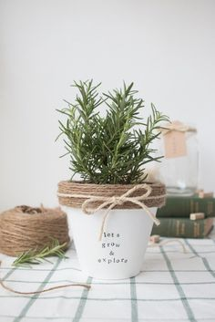 This little pot of herbs is so adorable! Who could resist buying it for a good cause? And the best part is, it's easy to make!