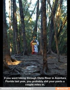 Horrifying clown statue deep in the woodsThis horrifying clown mannekin was reportedly placed on a hiking trail deep in the Oleta River in Aventura, Florida by a park employee who got it from the Enchanted Forest Elaine Gordon Park in North Miami. Clown Statue, Scary Photos, John Wayne Gacy, Gordon Parks, Send In The Clowns, Clowns In The Woods, Creepy Clown, Creepy Carnival, Halloween Carnival