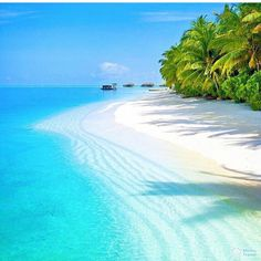 What a beautiful and stunning beach white sands gorgeous Maldives!