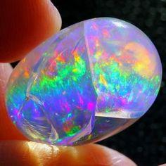 International Opals 18.5 x 13.4 x 10.4mm 14.27 carats Auction #634013 Opal Auctions