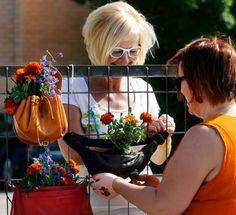 HS: 5.6.2014 Asukasliike joka istuttaa kukkia omituisiin istutusastioihin