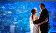 Unforgettable location for your first dance as newlyweds at the Living Seas Salon in Epcot. Photo: Ali, Disney Fine Art Photography