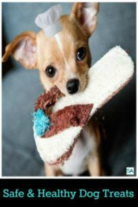 Safe and healthy dog treats. Keeping your dog healthy with the dos and donts of dog treats. Read more in http://lovablepawsandclaws.com/