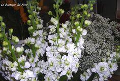 Total white . La Boutique del Fiore