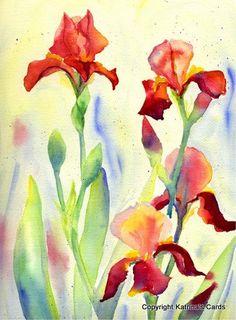 Burgundy Bearded Iris Watercolor Print by katrinascards on Etsy, $12.00