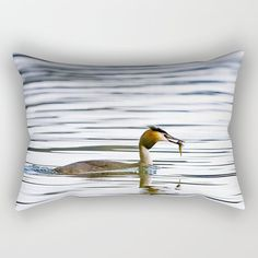 Great crested grebe and its catch Rectangular Pillow by Tapuphoto (Tapani Teittinen) Nature Photography, Bird, Pillows, Animals, Home Decor, Animales, Decoration Home, Animaux, Room Decor