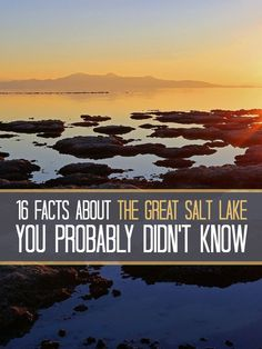 16 facts about The Great Salt Lake you probably didn't know