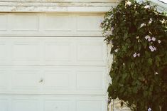 Boost your home's safety measures with our new roller garage doors and openers. Let us help our company for choosing the right style and design for your garage door. We Install And Repair Garage Door in Melbourne. Clematis, Isolant Mince, Electric Garage Door Opener, Garage Door Spring Repair, Garage Door Replacement, Garage Door Springs, Roller Doors, Lawn Equipment, Grow Room