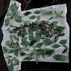 Eco dying - Tutorial, T-shirt makeover | NaKIN soap blog heel goed uitgelegd deze tutorial
