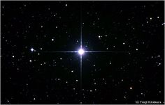 The Dog Star, Sirius, is easy to spot because it's the sky's brightest star.  Procyon - the other Dog Star - is near its brighter brother on the sky's dome.