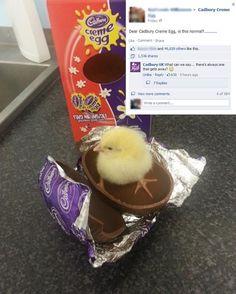 Easter Surprise Meme | Slapcaption.com