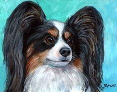 Papillon Dog Art Print 8x10 Painted by Dottie by DottieDracos