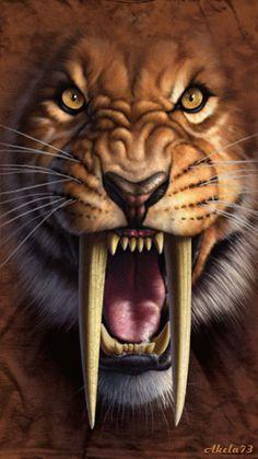 Saber Toothed Tiger Saber Toothed Cat Smilodon Stone