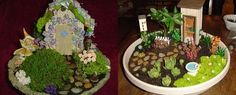 images about Dish garden ideas on Pinterest Dish