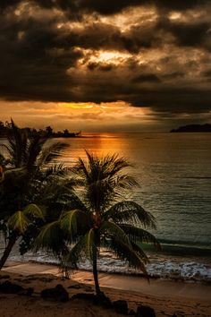 Bocas del Torro, Panama by Jimbos Padrós  xo
