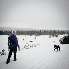 #Rovaniemi #Lapland #Snow # Snow, Mountains, Instagram, Bud, Bergen, Let It Snow