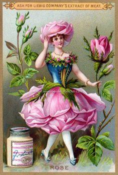 Flower Fairy Fabric Block Rose Girl from Victorian Trade Card Image Vintage Labels, Vintage Ephemera, Vintage Paper, Vintage Postcards, Vintage Images, Arte Elemental, Rose Girl, Art Deco, Art Nouveau