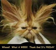 FRIDAY - Whooo!! What a WEEK! Thank God It's FRIDAY