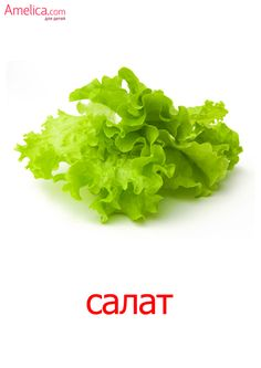 Fruits And Vegetables, Veggies, Russian Language, Teaching Materials, Infant Activities, Special Education, Lettuce, Herbs, Recipes