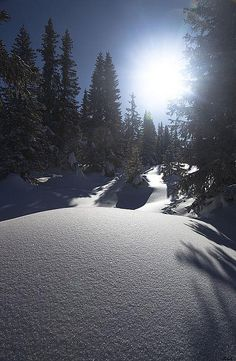 Winter Sun by robysaltori, Paganella, Dolomites, Italy via Flickr