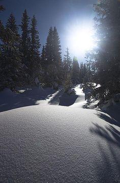 Winter Sun by robysaltori, Paganella, Dolomites, Italy via Flickr