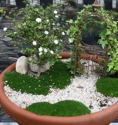 Love this. Mini garden space in a pot.