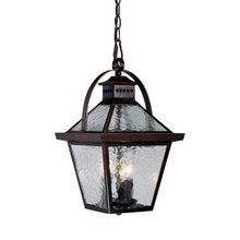 "View the Acclaim Lighting 7676 Bay Street 3 Light 16.5"" Height Outdoor Pendant at LightingDirect.com."