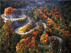 Switchback Highway Chattanooga, Tennessee...Apparently this is a road traveled by cyclists...would love to give it a go.